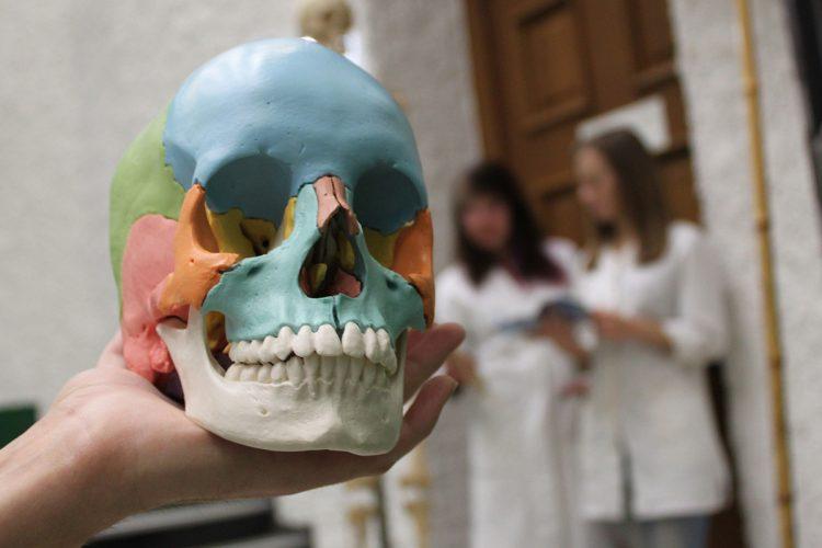 Osteopatia Albo. Corso di formazione sul Sistema Cranio-Sacrale